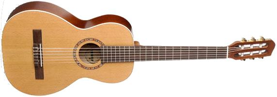 Art & Lutherie AMI Nylon String Parlor Guitar